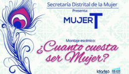 Mujer T